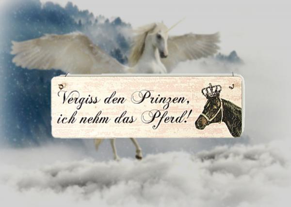 """Holzschild """"Vergiss den Prinzen"""" mit Aufhänger"""